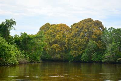 Flusssafari auf dem Klias River