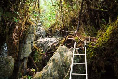 Wanderung zu den Mulu Pinnacles