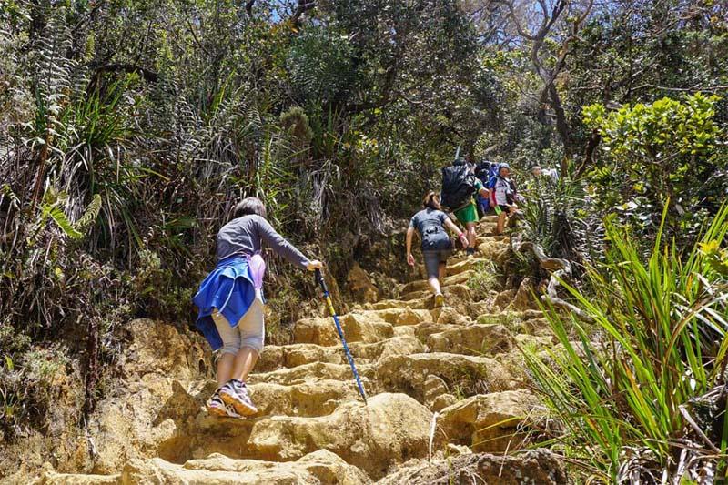 Stufen zum Gipfel